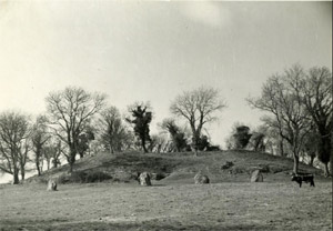 Newgrange before excavation