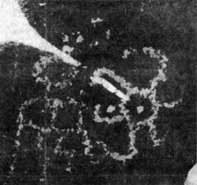 Petroglyph 'calendar' at Hohokam Indian site